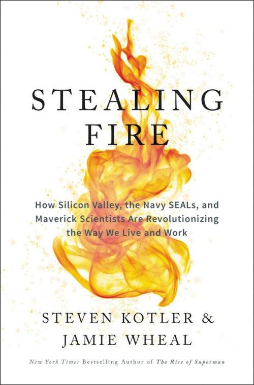 Steven Kotler, Jamie Wheal – Stealing Fire