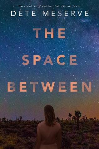 Dete Meserve – The Space Between