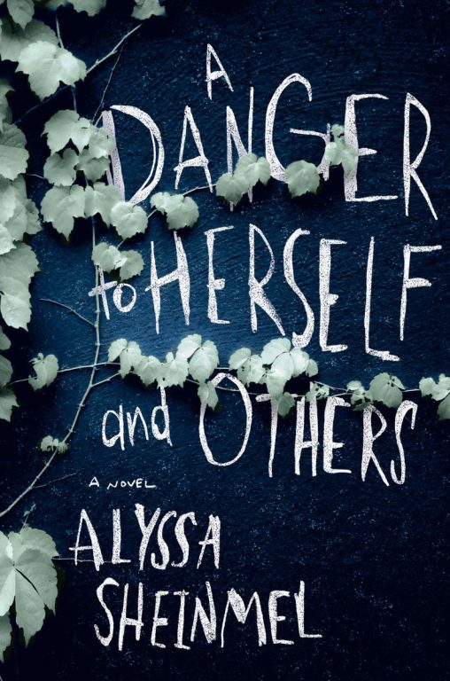 Alyssa Sheinmel – A Danger To Herself And Others