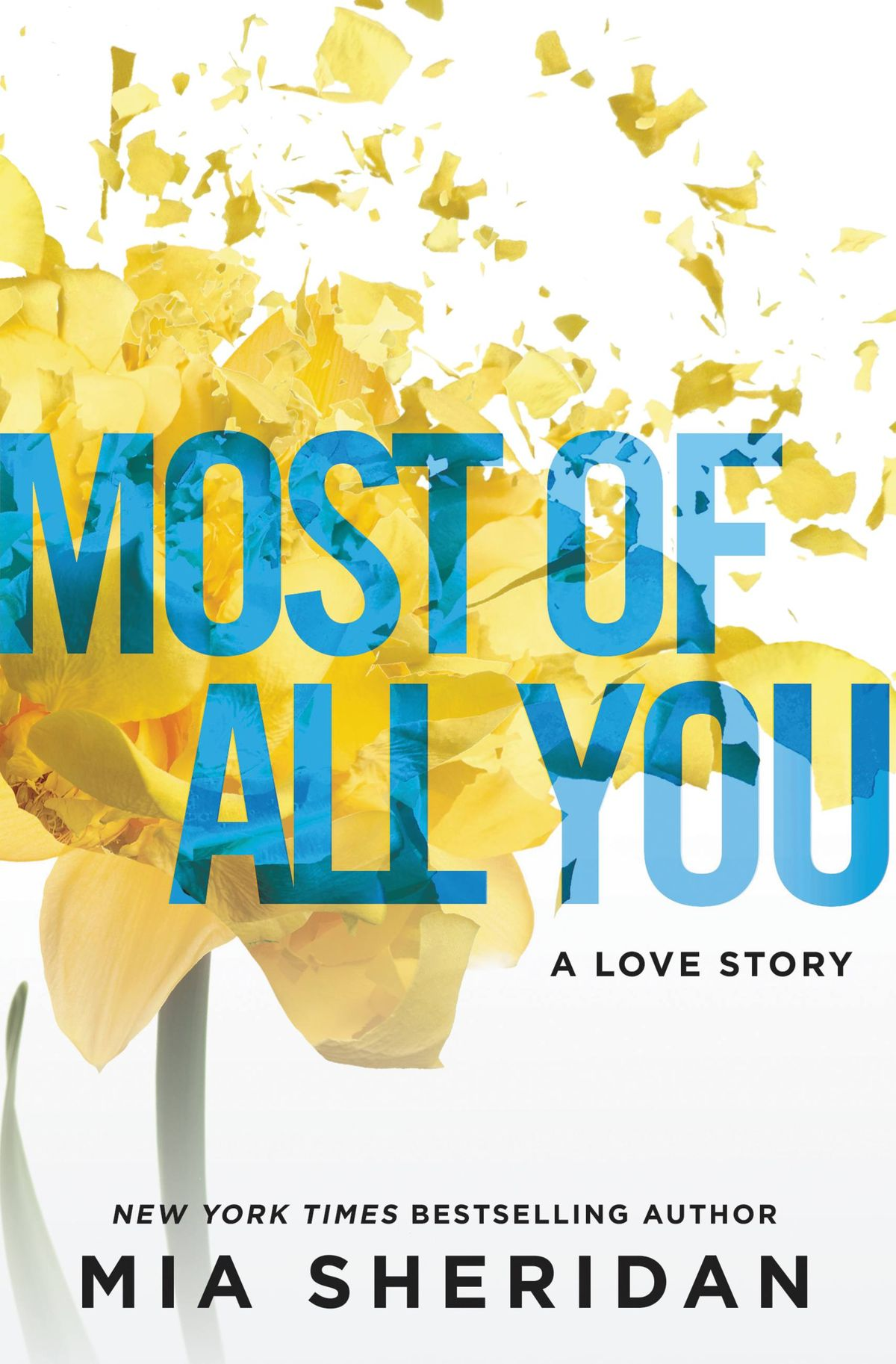 Mia Sheridan – Most Of All You