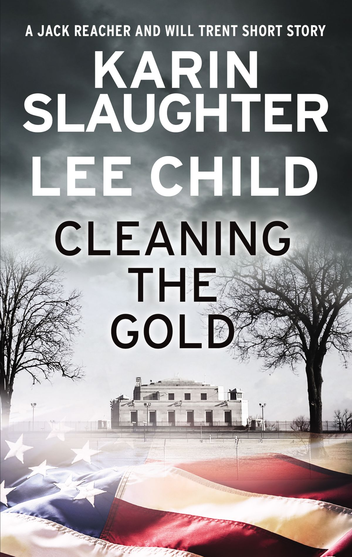 Karin Slaughter, Lee Child – Cleaning The