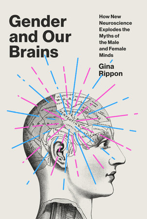 Gender And Our Brains: How New Neuroscience Explodes The Myths Of The Male And Female Minds By Gina Rippon