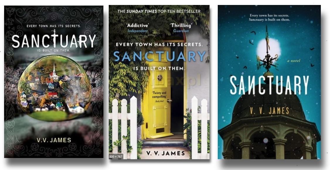 Sanctuary By V.V. James English | 2020