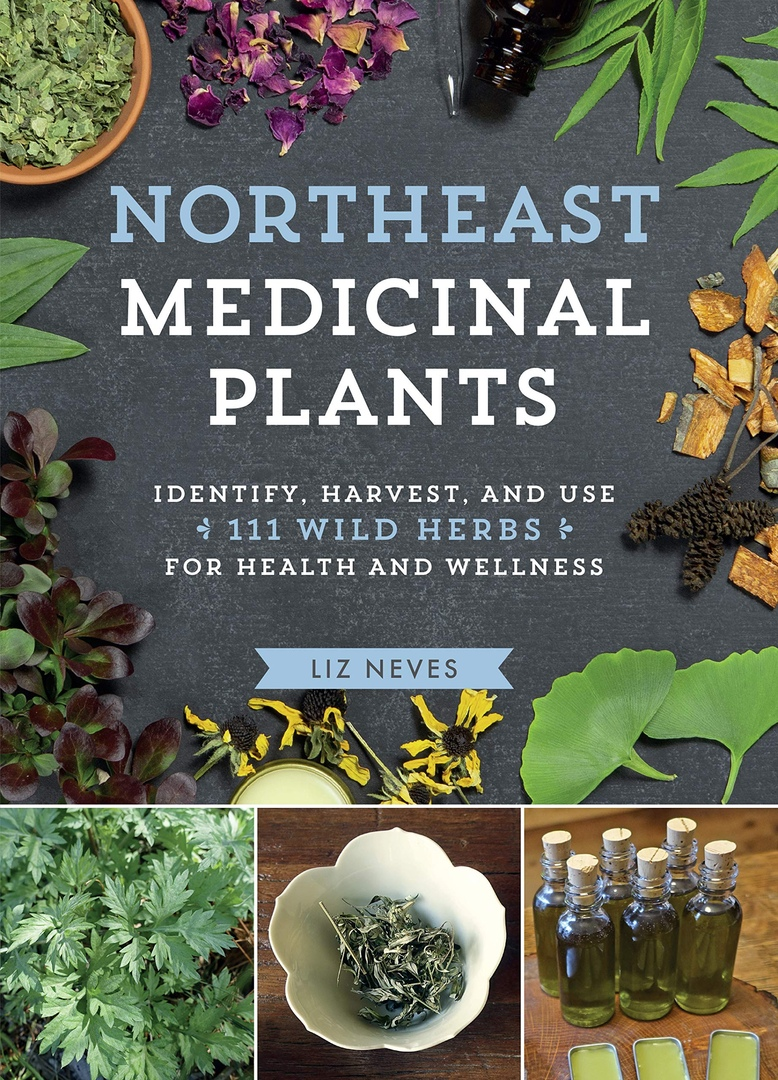 Northeast Medicinal Plants: Identify, Harvest, And Use 111 Wild Herbs For Health And Wellness By Liz Neves