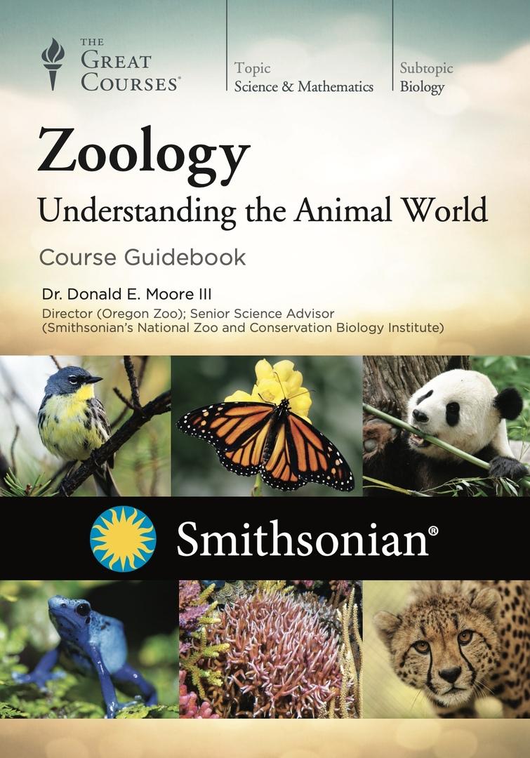 Zoology: Understanding The Animal World (Moore III, 2017)