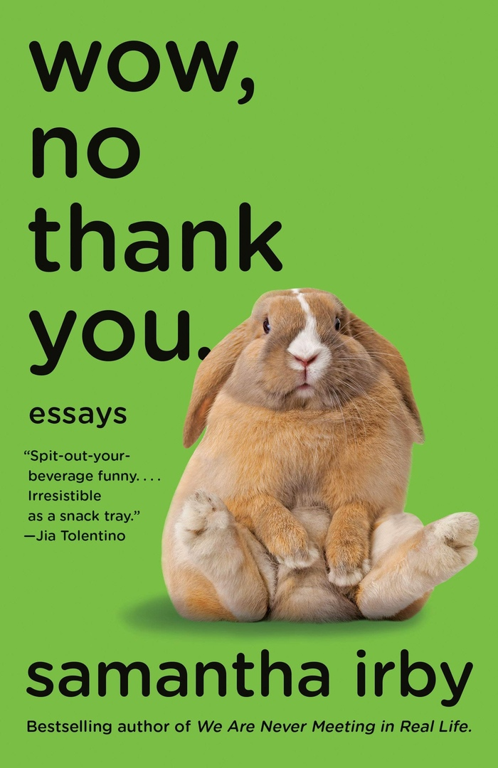 Wow, No Thank You: Essays